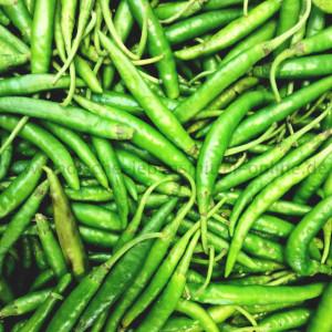gruene-chilis-frisch-green-chillis-mirchi-indien