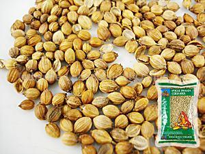 koriandersamen-coriander-seeds-trs