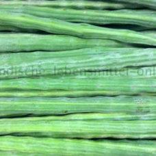 meerrettichbaum-frisch-drumstick-moringa-murungaikai